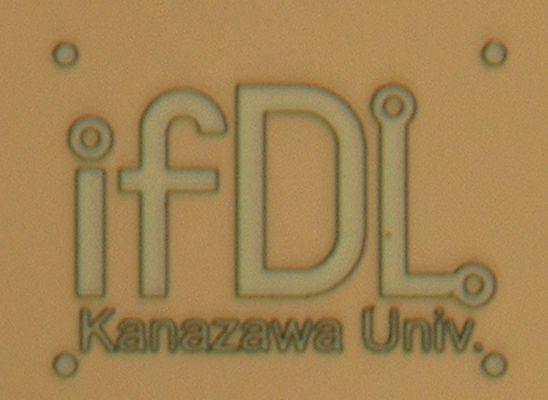ifDL_logo_1209.jpg